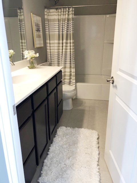 Revamp Your Bathroom For Less Than 100